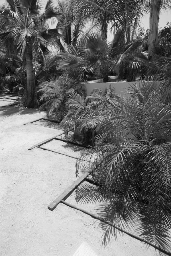 3muros-Todos Santos-a10studio-architecture-Baja-0611-66