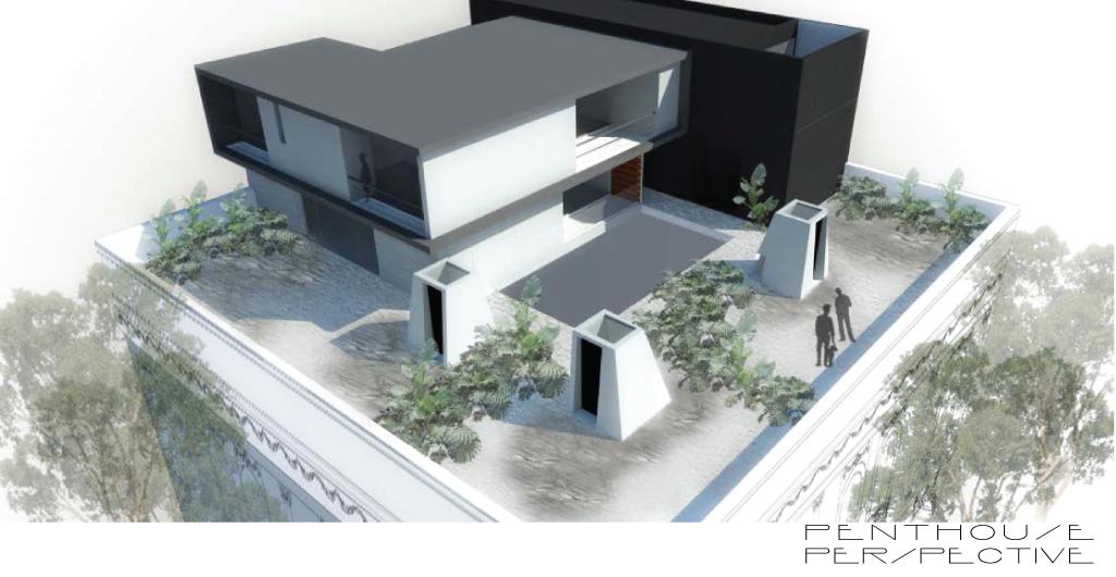 P403-roma-lofts-a10-studio-architecture-Mexico-City-15