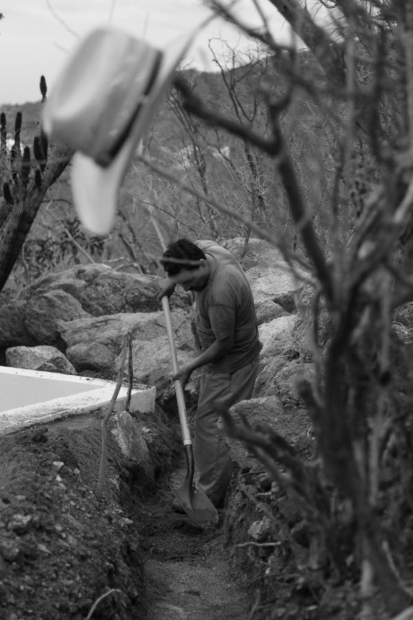 a10-studio-Zacatitos-Baja-Sur-landscape-architecture-32